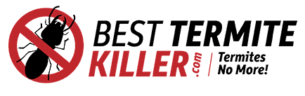 BestTermiteKiller.com - Helping You Eliminate Termites!