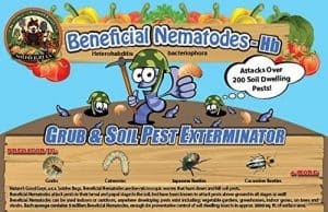beneficial-nematodes