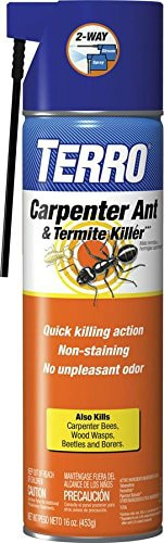 best termite killer spray