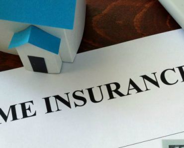 is termite damage covered by insurance
