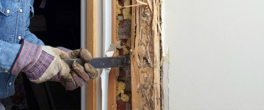 termite treatment health risks