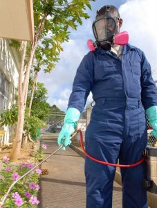 A man spraying insecticides
